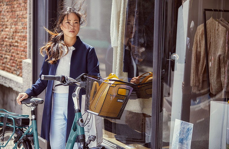 Elektrische comfortabele fietsen van Gazelle